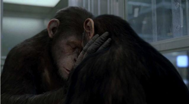 Planeta dos macacos 1968 dublado online dating 5