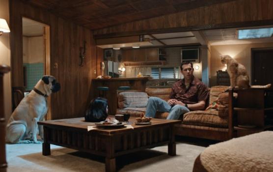 Ryan Reynolds ouve vozes dos animais de estimação em novo filme